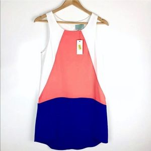 Skies Are Blue NWT Colorblock Shift Dress